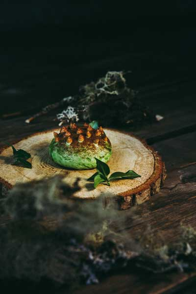 Waldboden und der Pilz: Waldbierteig, fermentierte Pilzcreme, Pilzkraut, Taubnessel