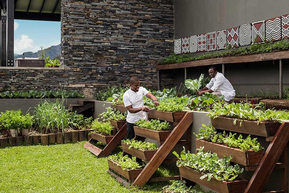 Nyungwe House – Chefs Garden
