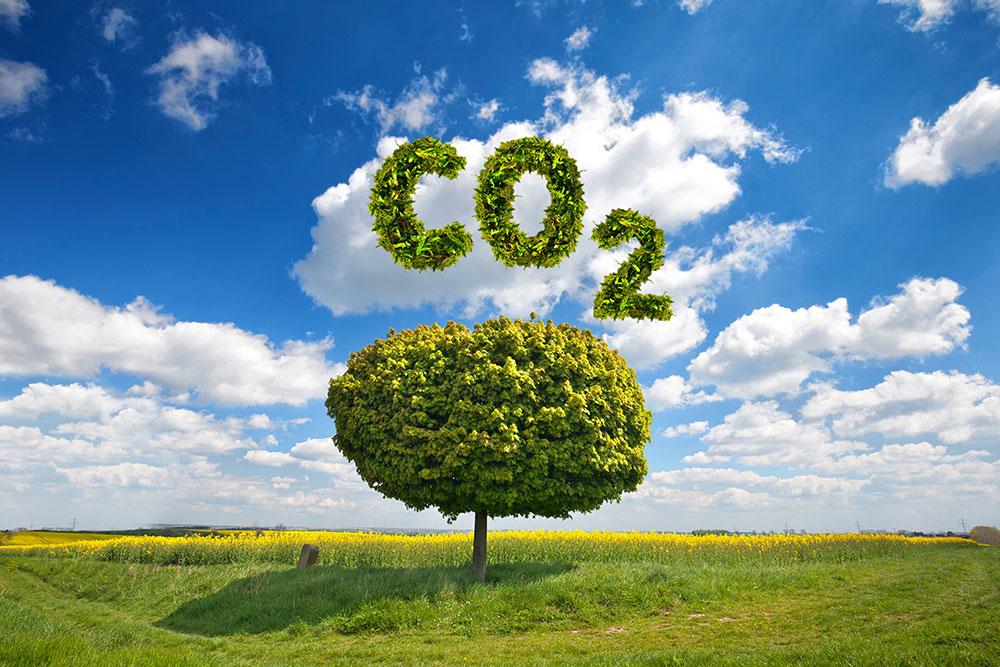 35 Tipps für weniger CO2