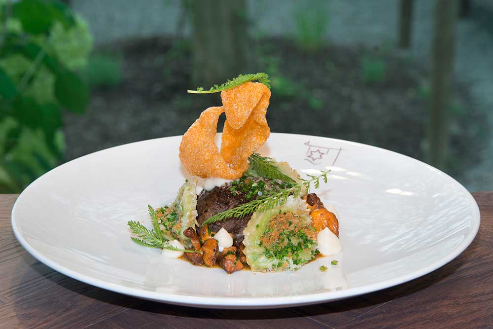 Goldener Stern, Friedberg: Kulinarik auf feinstem Niveau