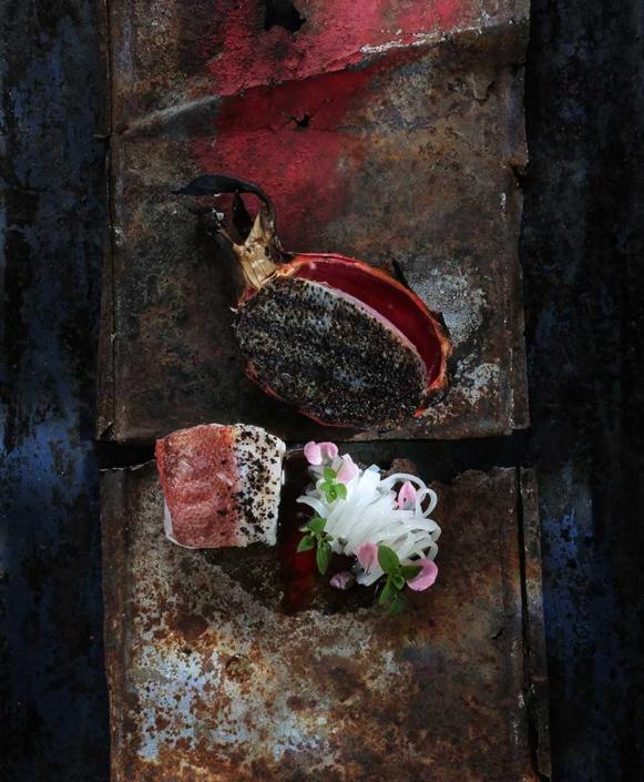 Asche auf meinen Teller – Rotbarsch, Limettenasche, Geflügelwürzfond & Pitahaya